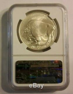 2001 D Buffalo Silver Dollarngc Ms 69