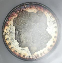 1891-cc Ngc Argent Morgan Dollar Ms63pl Preuve Comme Tond Vieux Gros Titulaire